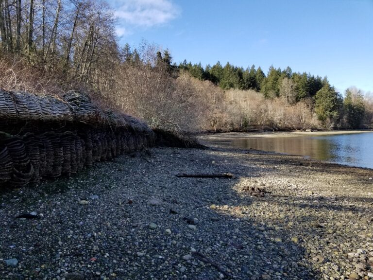 Shoreline Armoring in Washington State