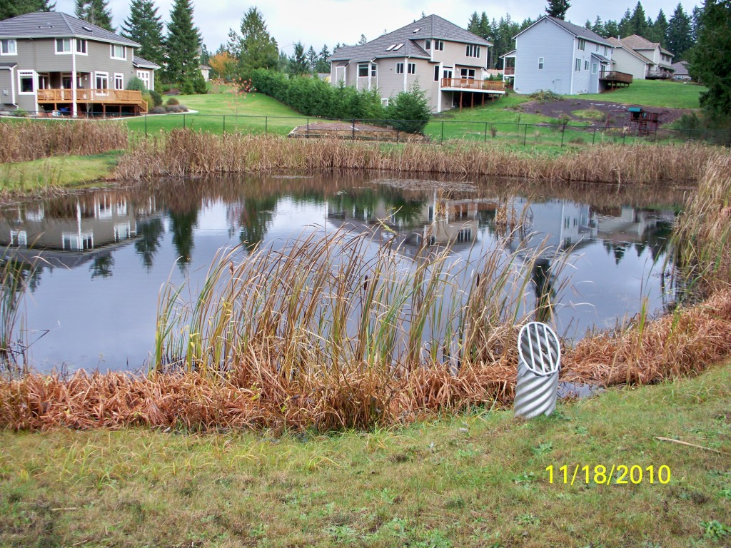 Herrera environmental consultants kitsap county for Stormwater pond design